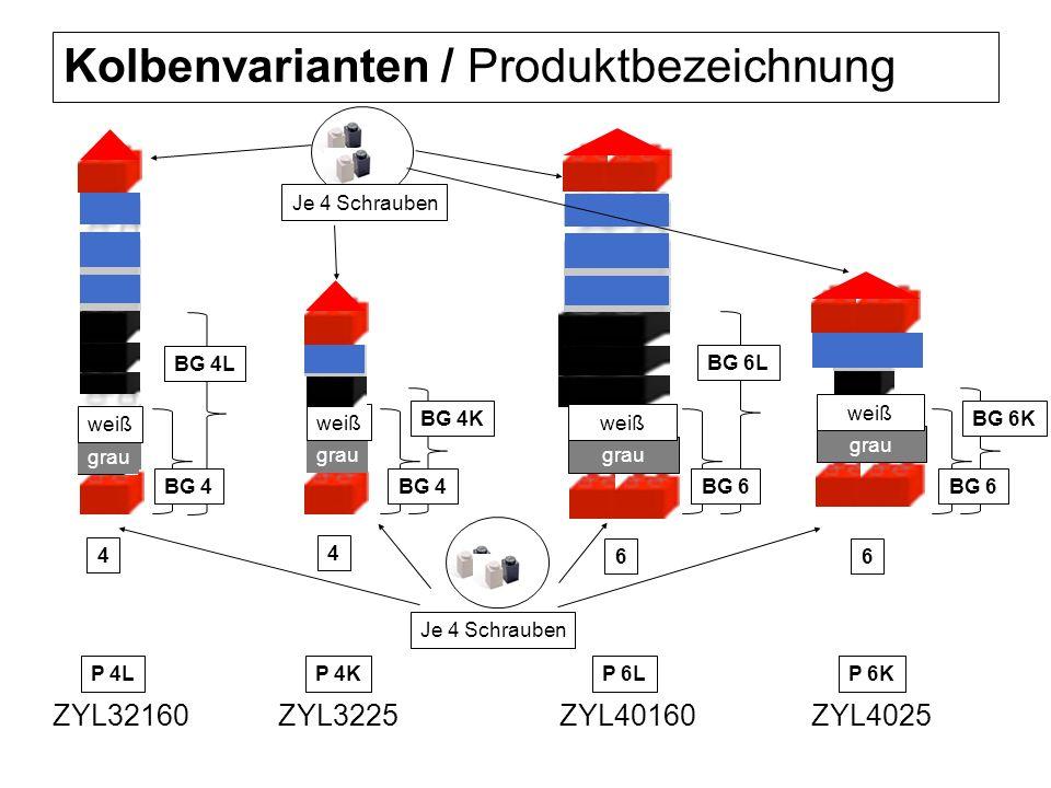 Kolbenvarianten / Produktbezeichnung