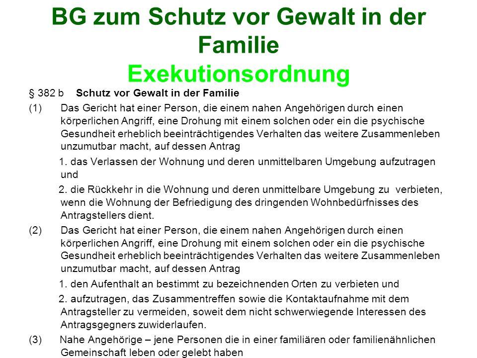 BG zum Schutz vor Gewalt in der Familie Exekutionsordnung