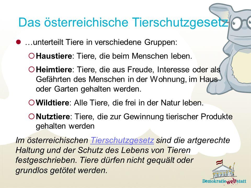Das österreichische Tierschutzgesetz