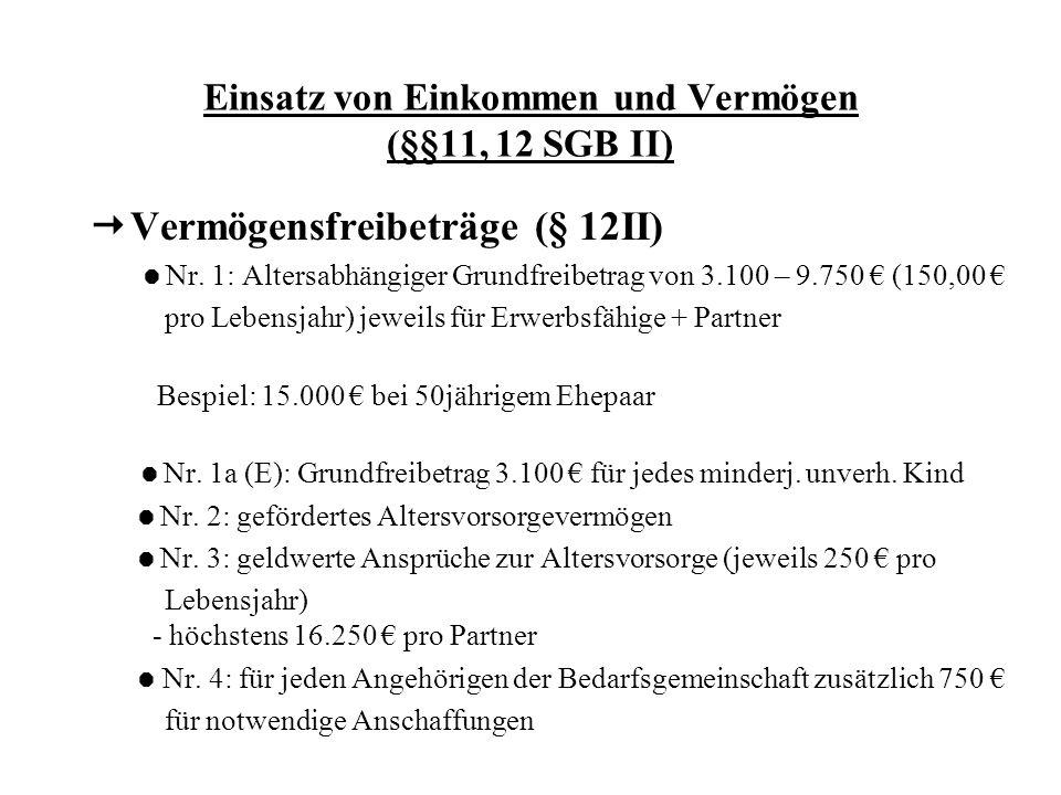 Einsatz von Einkommen und Vermögen (§§11, 12 SGB II)