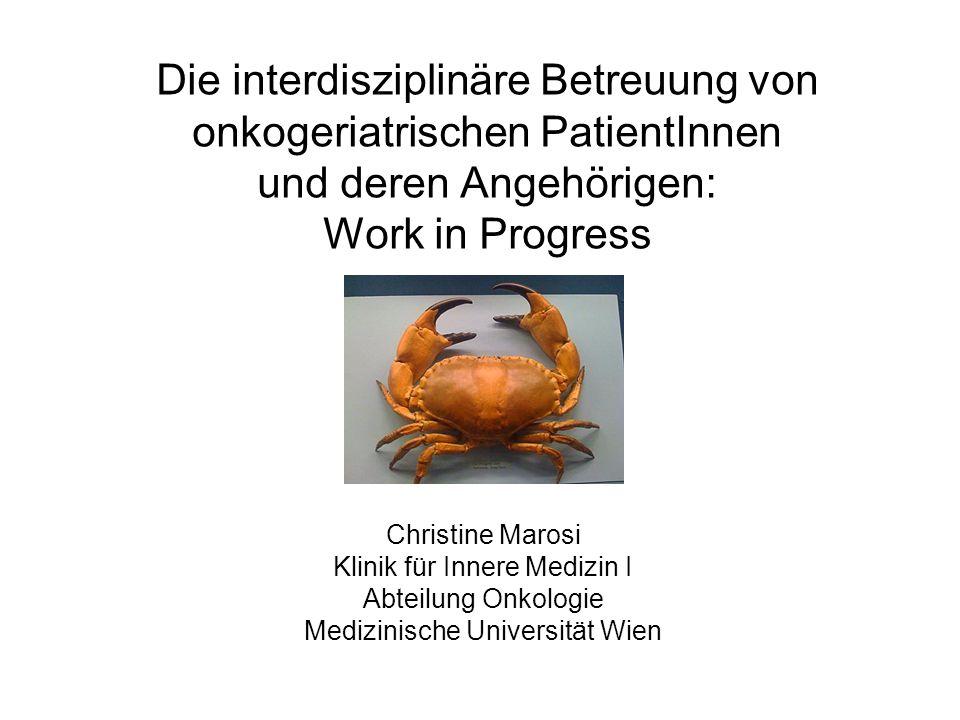 Die interdisziplinäre Betreuung von onkogeriatrischen PatientInnen und deren Angehörigen: Work in Progress