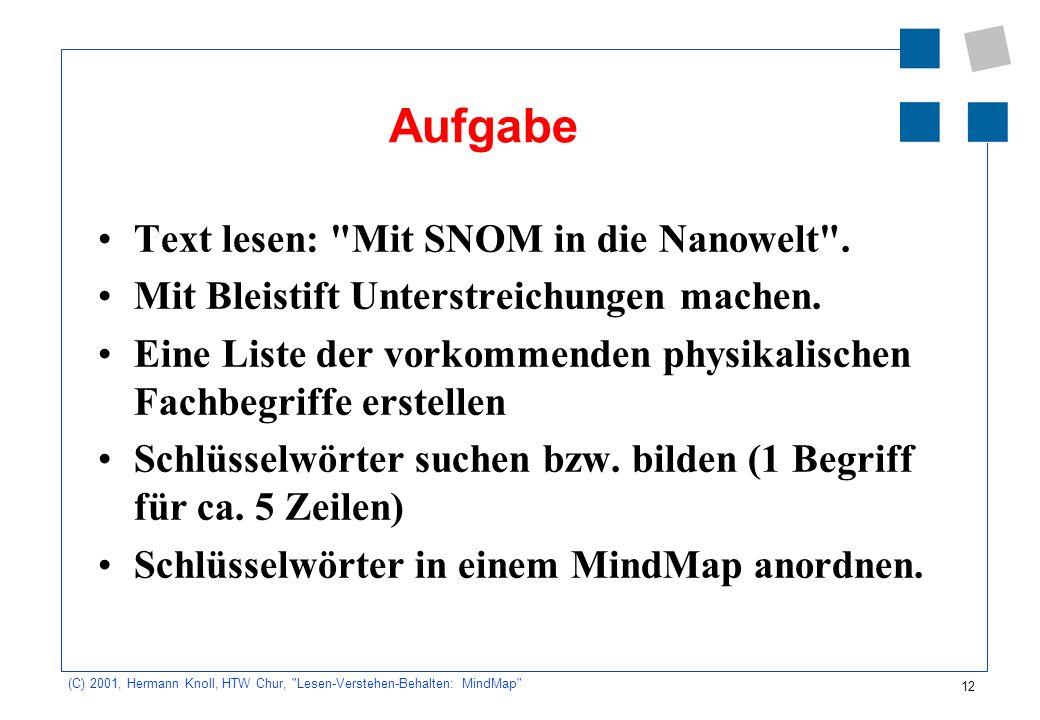 Aufgabe Text lesen: Mit SNOM in die Nanowelt .