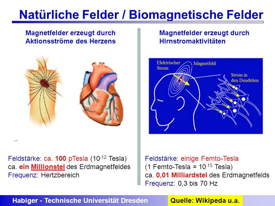 Natürliche Felder / Biomagnetische Felder