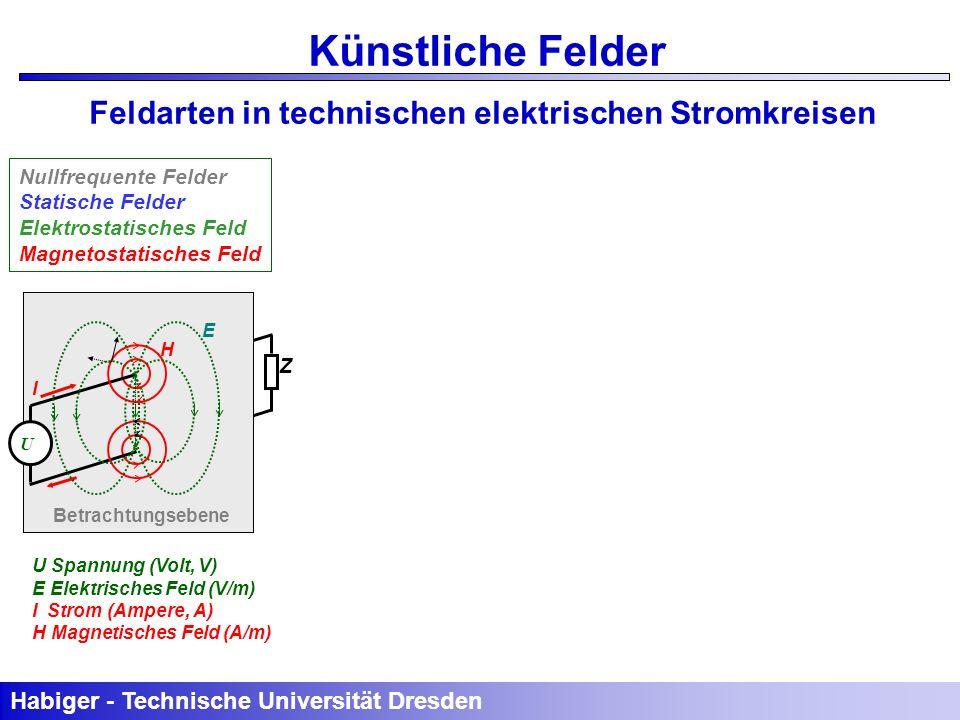 Künstliche Felder Feldarten in technischen elektrischen Stromkreisen