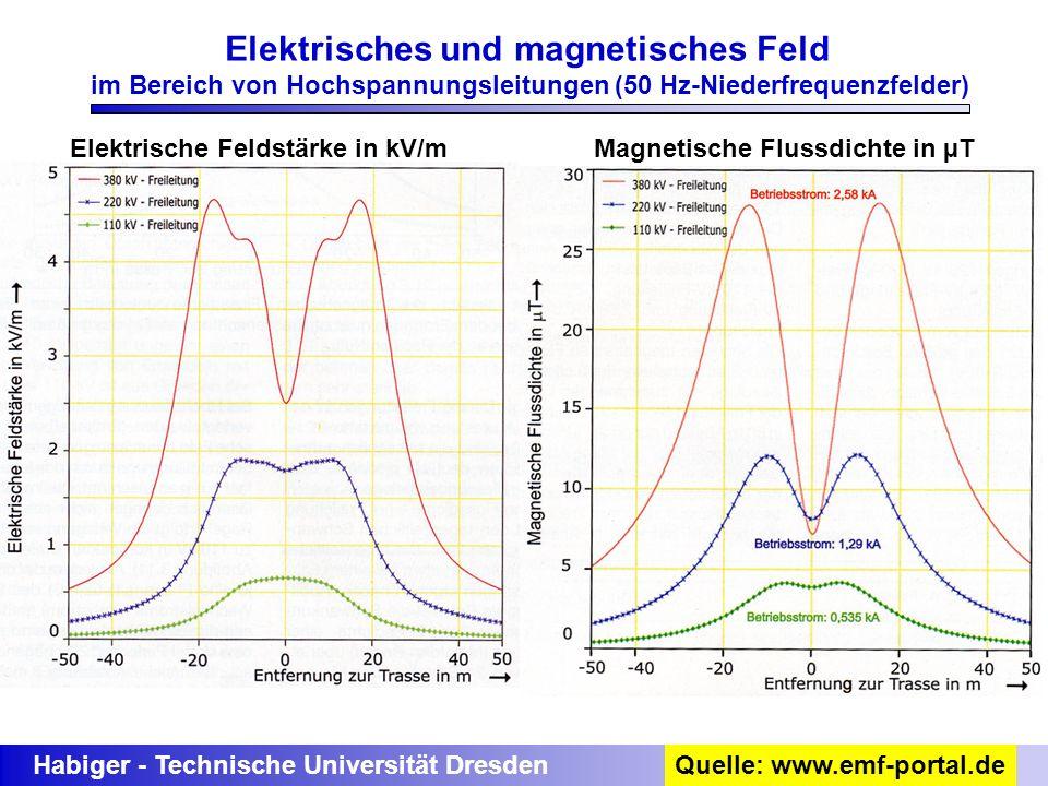 Elektrisches und magnetisches Feld