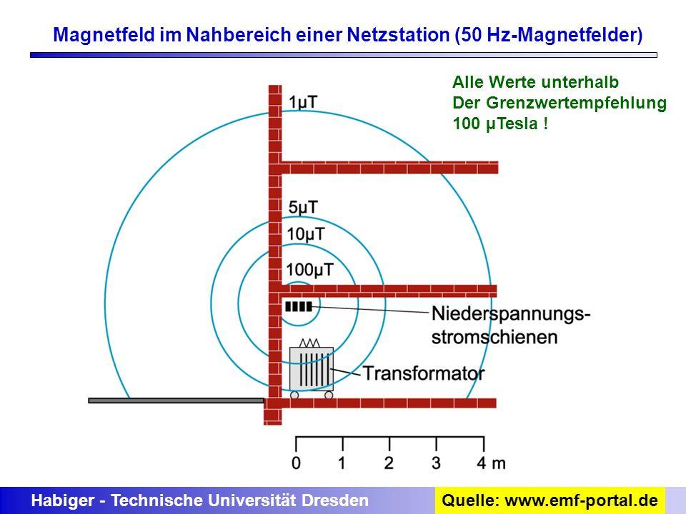 Magnetfeld im Nahbereich einer Netzstation (50 Hz-Magnetfelder)