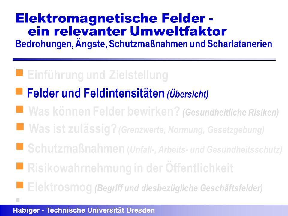 Einführung und Zielstellung Felder und Feldintensitäten (Übersicht)