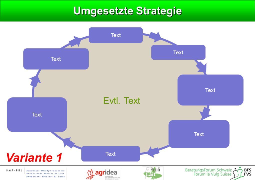 Umgesetzte Strategie Text Evtl. Text Text Text Variante 1