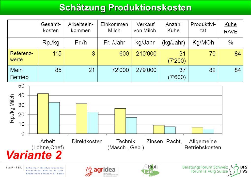 Schätzung Produktionskosten