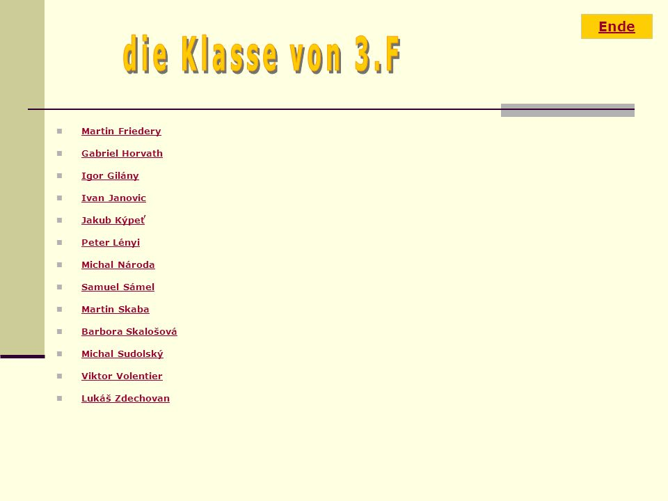 die Klasse von 3.F Ende Martin Friedery Gabriel Horvath Igor Gilány