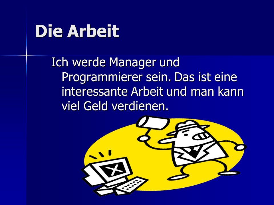 Die Arbeit Ich werde Manager und Programmierer sein.