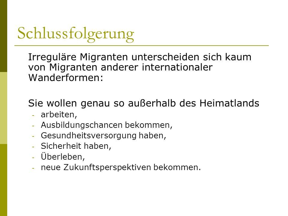 Schlussfolgerung Irreguläre Migranten unterscheiden sich kaum von Migranten anderer internationaler Wanderformen: