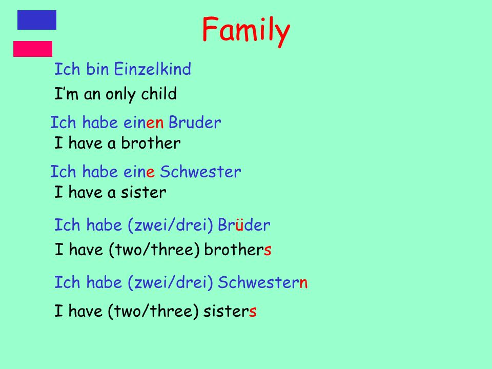 Family Ich bin Einzelkind I'm an only child Ich habe einen Bruder
