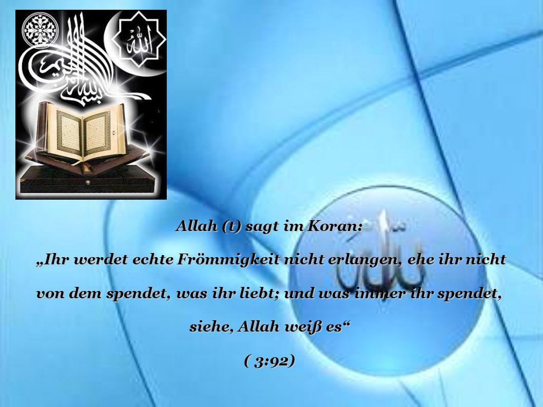Allah (t) sagt im Koran: