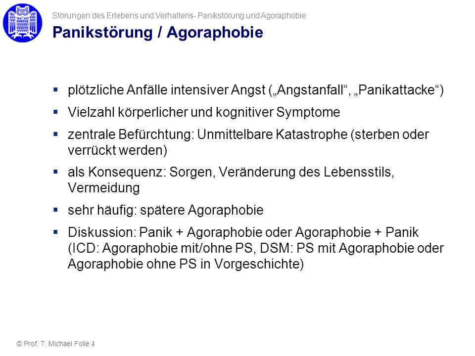 Panikstörung / Agoraphobie