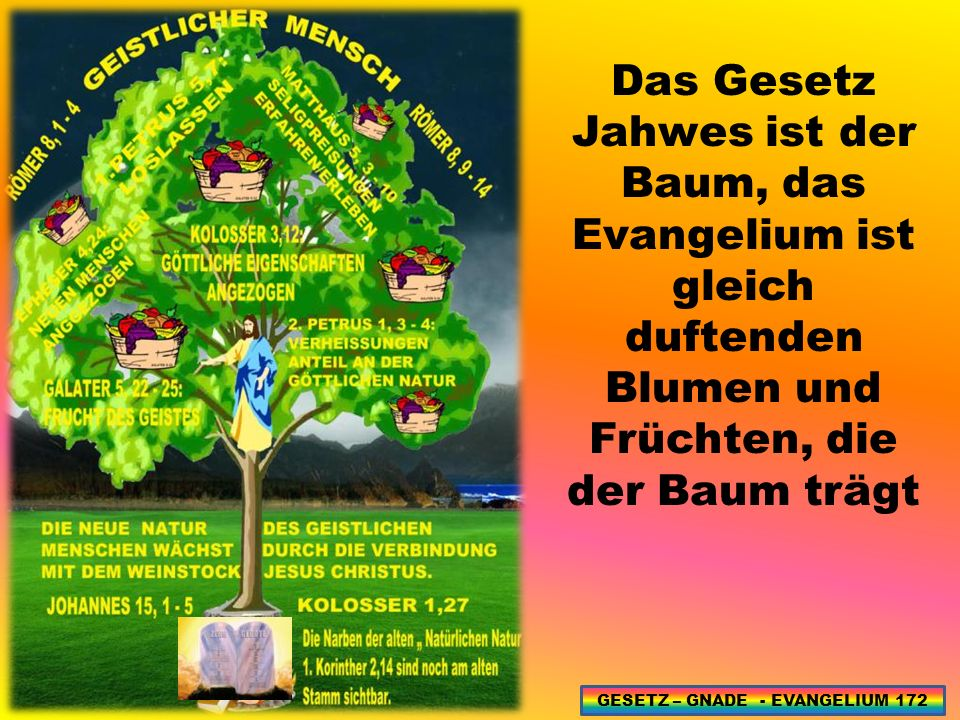 GESETZ – GNADE - EVANGELIUM 172