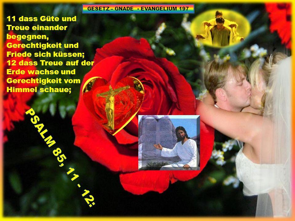 GESETZ – GNADE - EVANGELIUM 197