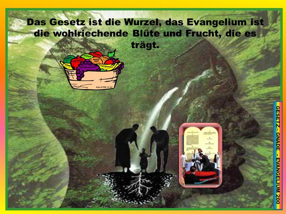 GESETZ – GNADE - EVANGELIUM 200
