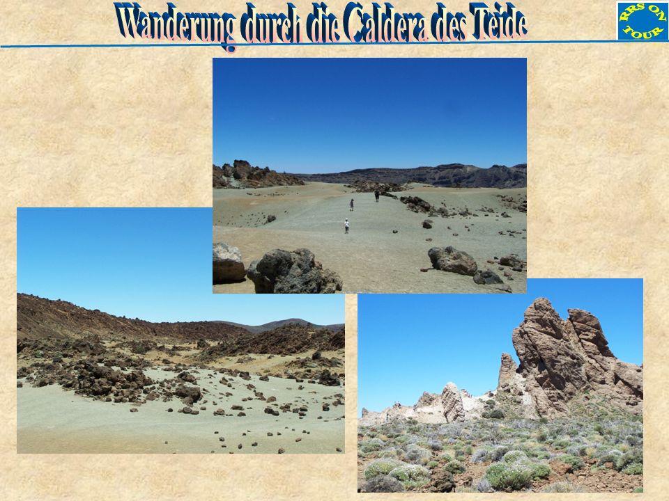 Wanderung durch die Caldera des Teide