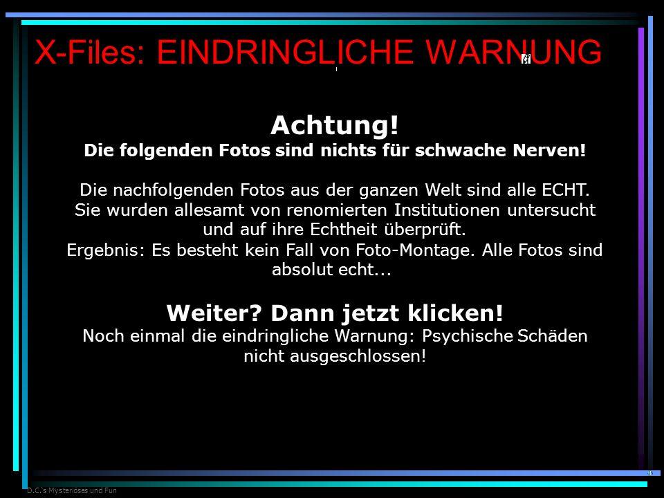 X-Files: EINDRINGLICHE WARNUNG