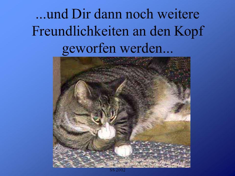 Detlef Krasemann DHV Speyer SS 2002