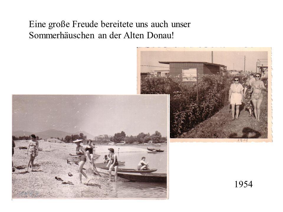 Eine große Freude bereitete uns auch unser Sommerhäuschen an der Alten Donau!