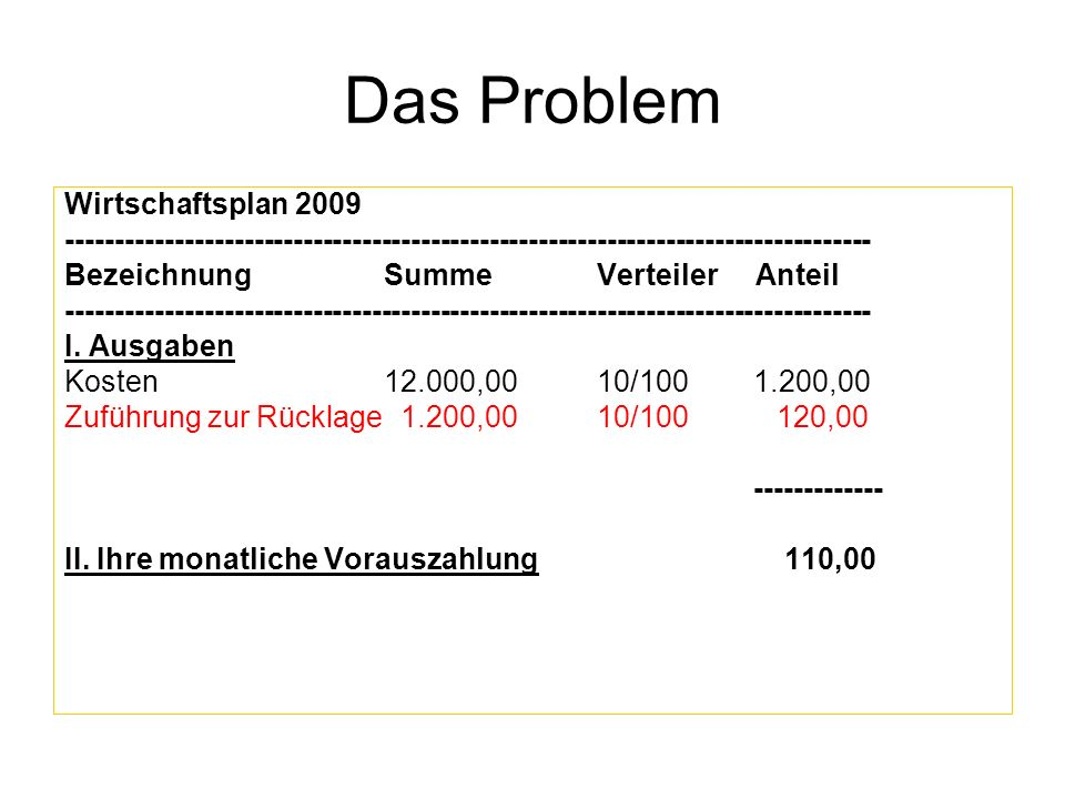 Das Problem Wirtschaftsplan 2009