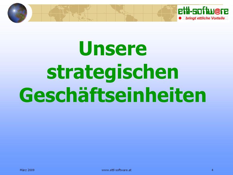 Unsere strategischen Geschäftseinheiten