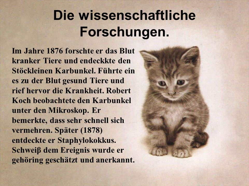 Die wissenschaftliche Forschungen.