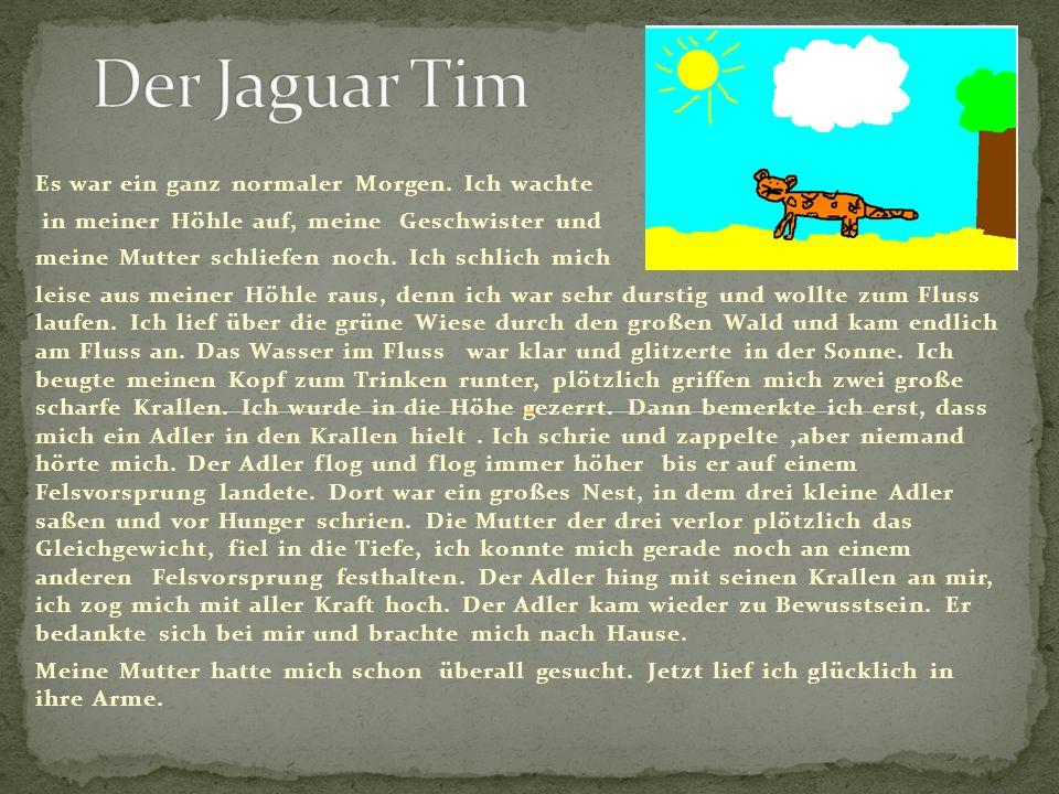 Der Jaguar Tim Es war ein ganz normaler Morgen. Ich wachte
