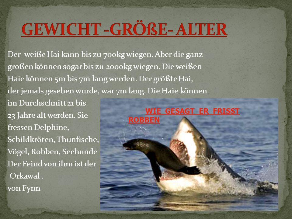 GEWICHT -GRÖßE- ALTER
