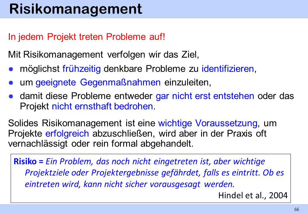 Risikomanagement In jedem Projekt treten Probleme auf!