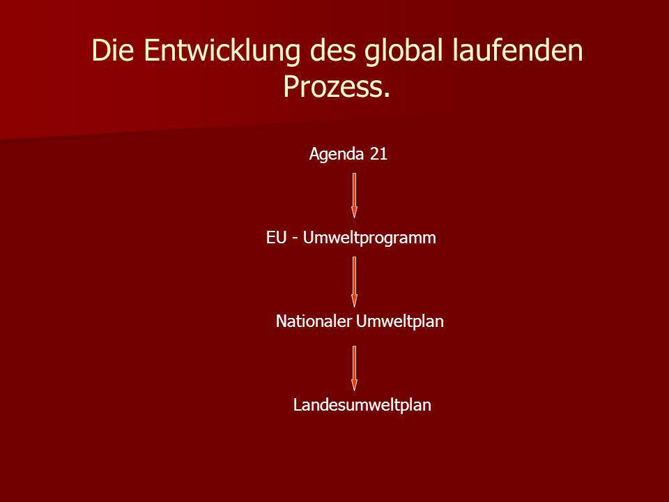 Die Entwicklung des global laufenden Prozess.