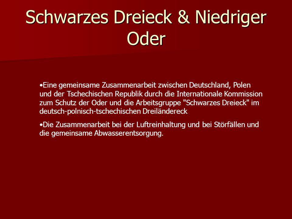 Schwarzes Dreieck & Niedriger Oder