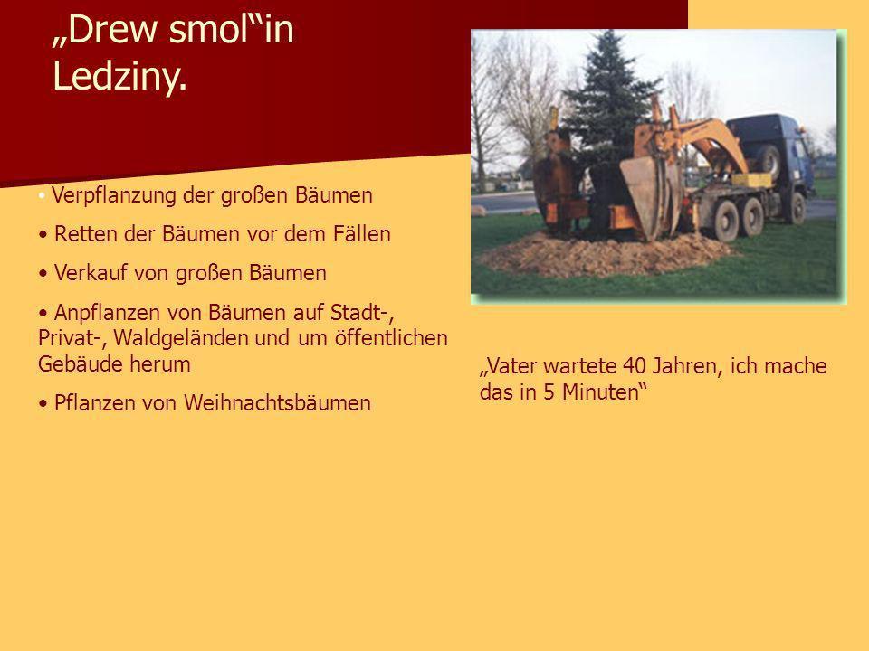 """""""Drew smol in Ledziny. Verpflanzung der großen Bäumen"""