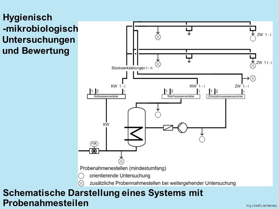Schematische Darstellung eines Systems mit Probenahmesteilen
