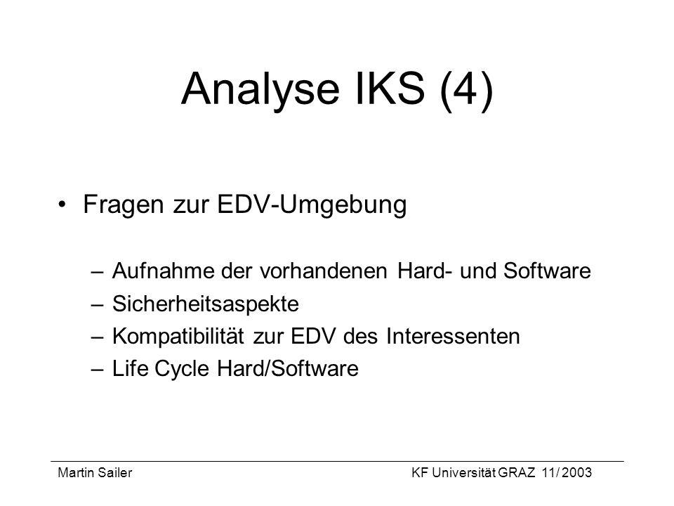 Analyse IKS (4) Fragen zur EDV-Umgebung