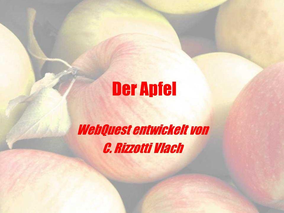 WebQuest entwickelt von C. Rizzotti Vlach
