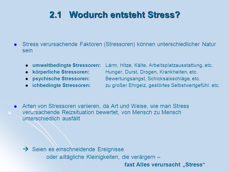 2.1 Wodurch entsteht Stress