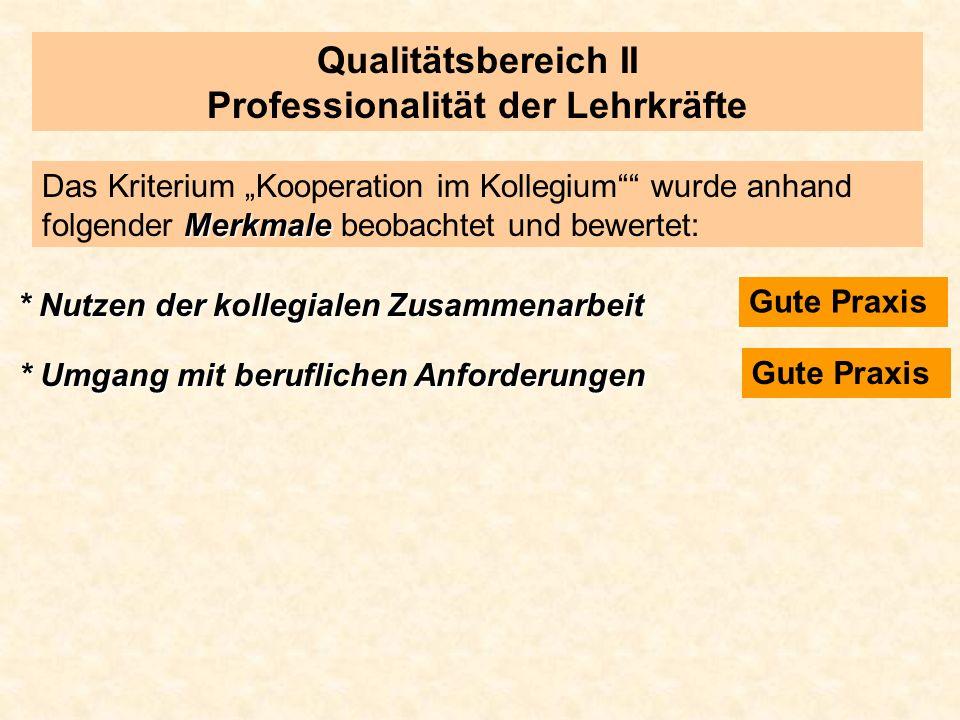 Qualitätsbereich II Professionalität der Lehrkräfte