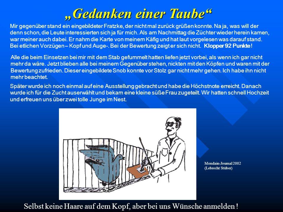 """""""Gedanken einer Taube"""