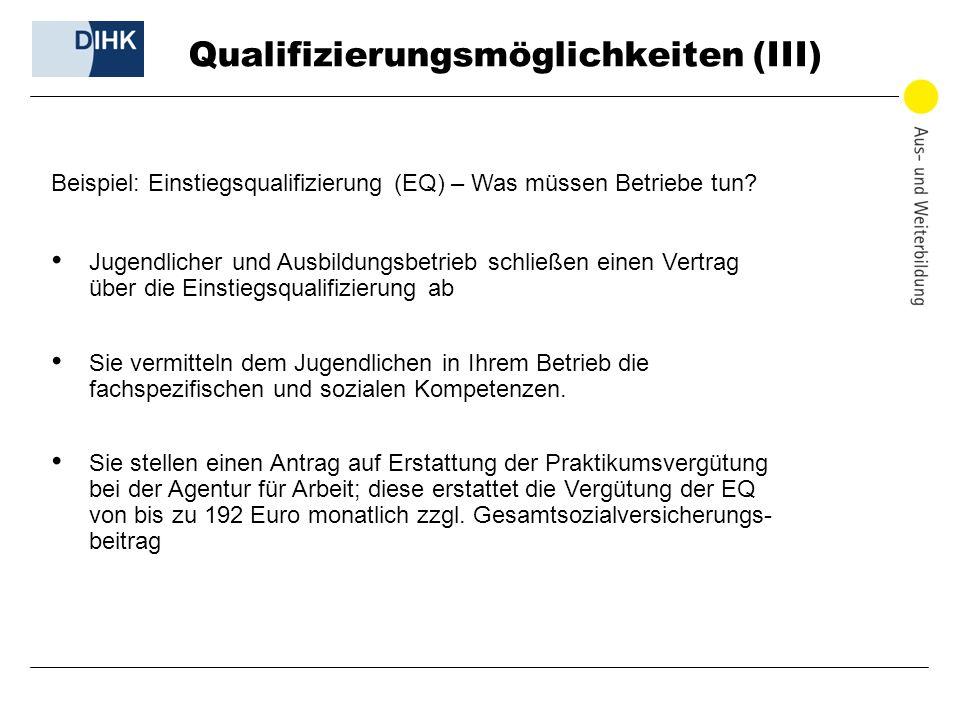 Qualifizierungsmöglichkeiten (III)