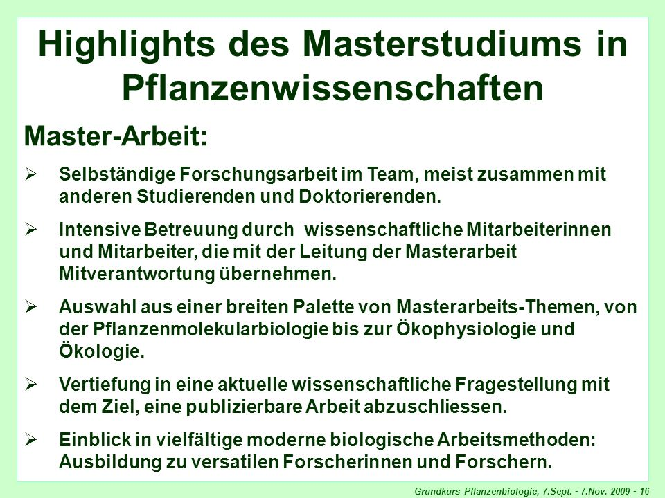 Highlights Master-Arbeit