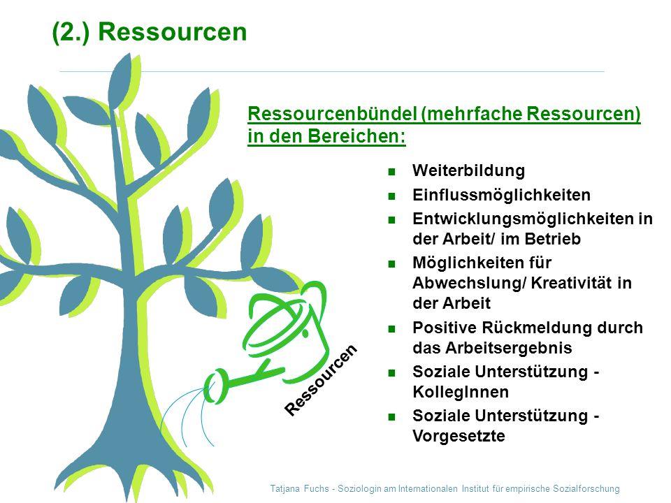 (2.) Ressourcen Ressourcenbündel (mehrfache Ressourcen) in den Bereichen: Weiterbildung. Einflussmöglichkeiten.