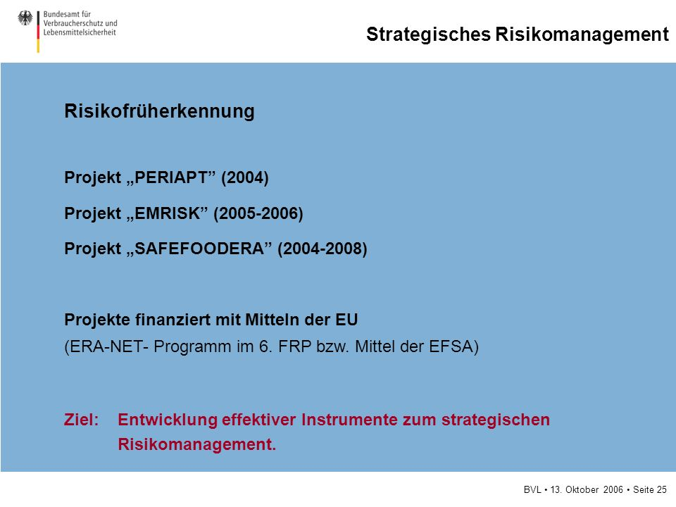 Strategisches Risikomanagement