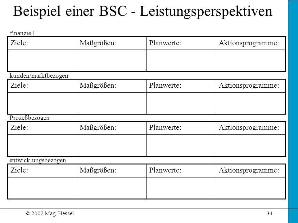 Beispiel einer BSC - Leistungsperspektiven