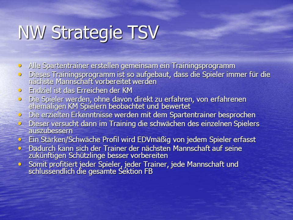 NW Strategie TSV Alle Spartentrainer erstellen gemeinsam ein Trainingsprogramm.