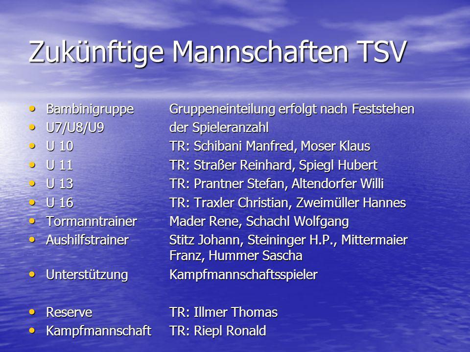 Zukünftige Mannschaften TSV