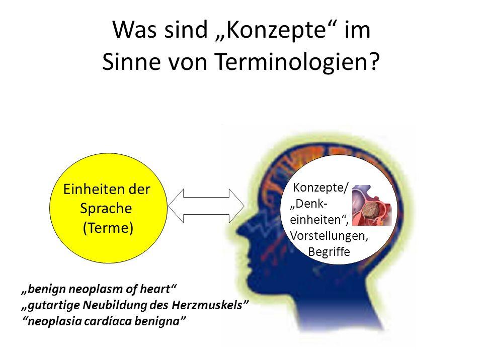 """Was sind """"Konzepte im Sinne von Terminologien"""