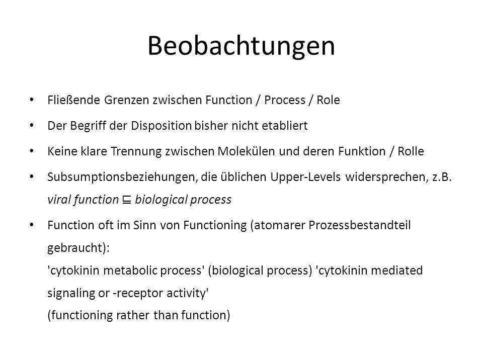 Beobachtungen Fließende Grenzen zwischen Function / Process / Role